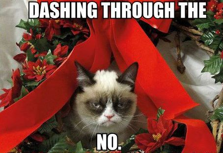 dashing-through-the-no-grumpy-cat-meme1