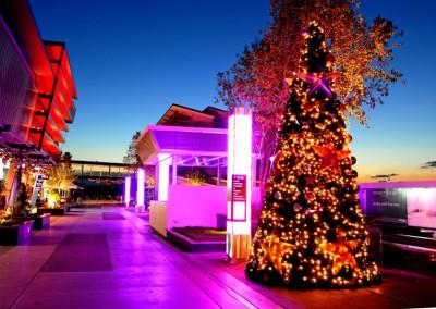 Brisbane Portside Christmas external illuminated xmas tree