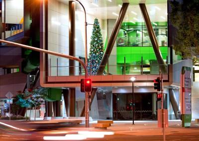 Lady Cilento childrens hospital Christmas tree