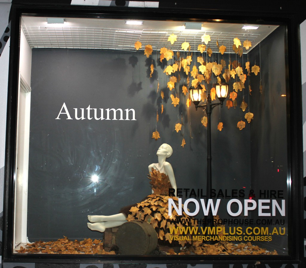 Autumn Window Display + VM Training