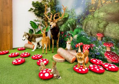 Robina Woodlands Play Space