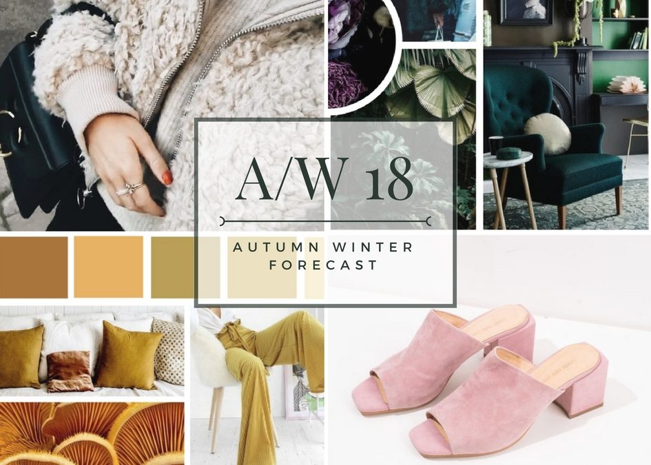 Autumn/ Winter Trends 2018